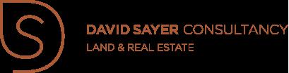 David Sayer